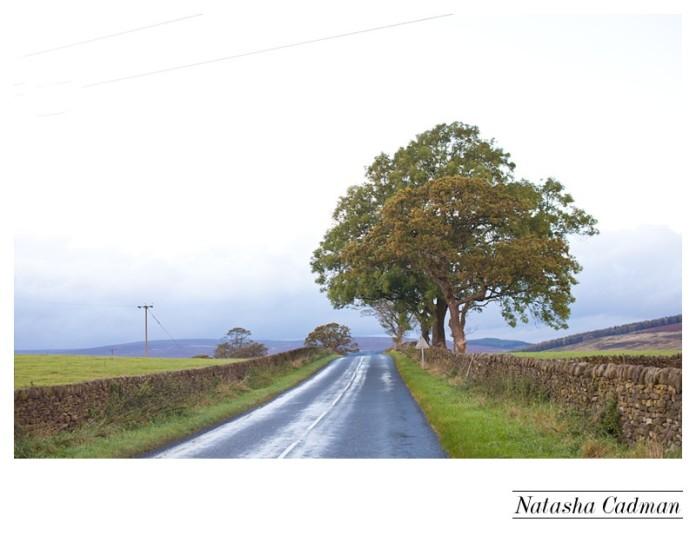 The Devonshire Fell Burnsall