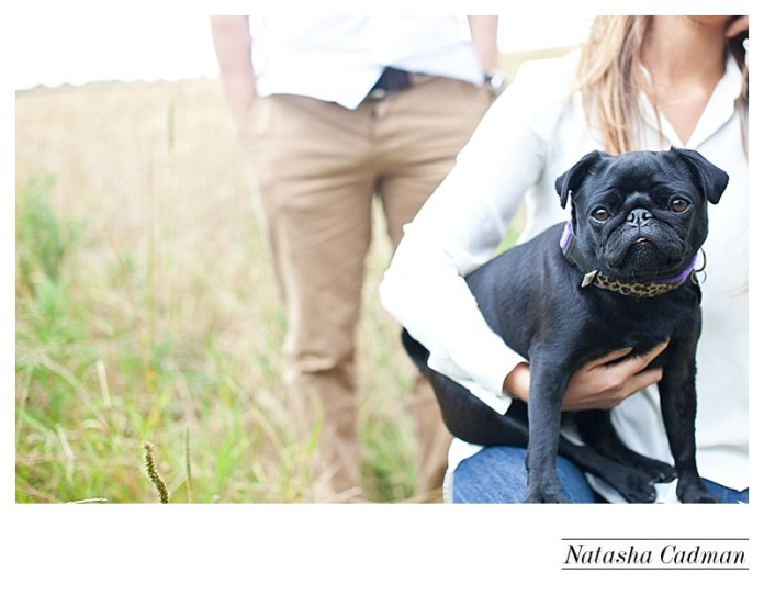 View More: http://natashacadman.pass.us/nick-and-louise-engagement